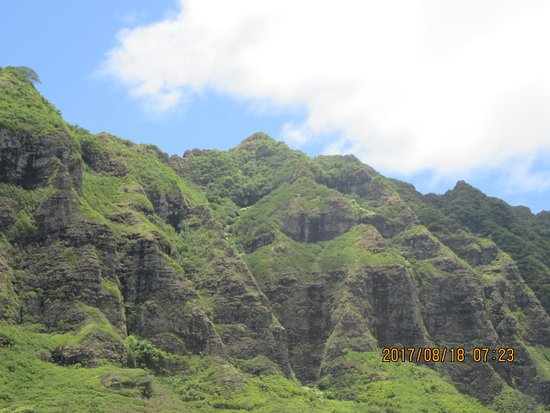 Kaneohe, Hawaje: 皺だらけの山(この形状の山が多かったです。
