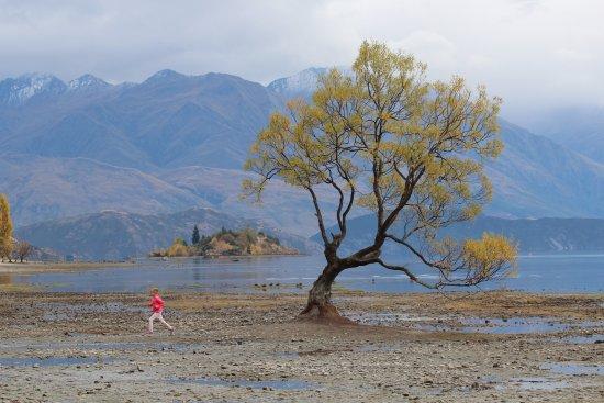 Wanaka, New Zealand: He and She