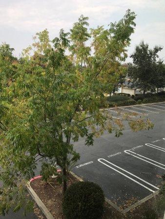 ร็อกลิน, แคลิฟอร์เนีย: photo4.jpg