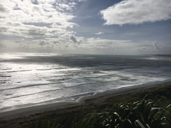 Hamilton, New Zealand: photo0.jpg