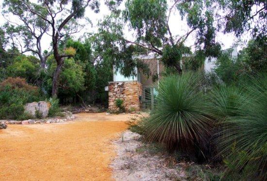 "Dunkeld, Australia: Lofthouse driveway ""Smoke Bush"""