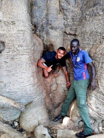 Mbour, Sénégal : dans le plus gors baobab du sénégal