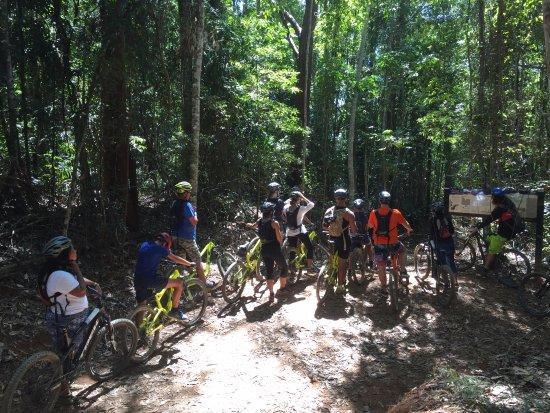Bike N Hike Adventure Tours: deep in the rainforest, bump track tour