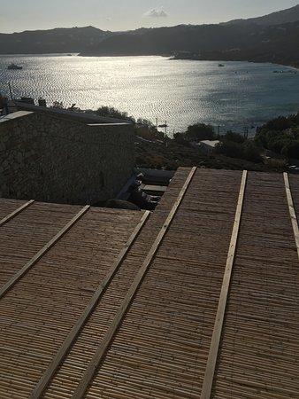 La vue sur piscine... en fait vue sur un toit