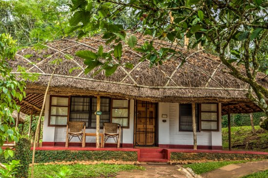 Spice Village : Our cottages are inspired by the indigenous dwellings of the local Mannan Tribe.