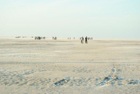 White Desert: View 