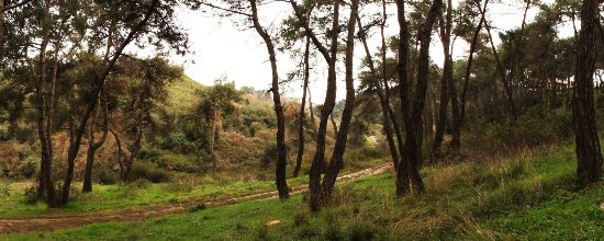 Hacet Deresi Tabiat Parki