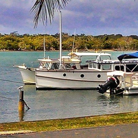 Noosaville, Australia: IMG_20140118_233450_large.jpg