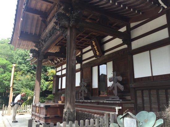 Jindai-ji Temple: photo4.jpg