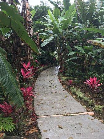 Naranjo, Коста-Рика: photo4.jpg