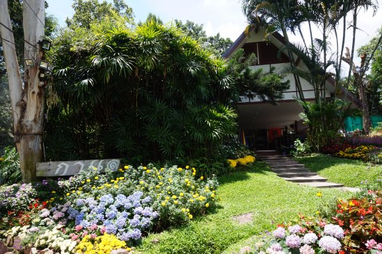 Photo of Galae Restauant in Chiang Mai, , TH