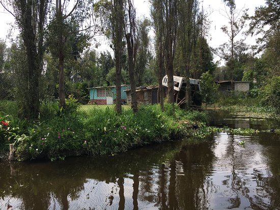 Floating Gardens Of Xochimilco Mexico City Top Tips Before You Go With Photos Tripadvisor