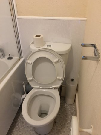 Roybridge, UK: Broken seat bracket & loo roll holder
