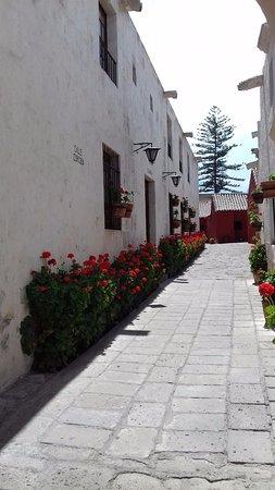 Monasterio de Santa Catalina: Interior