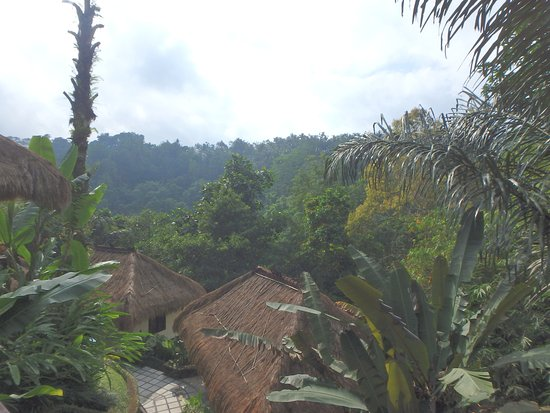 Nandini Bali Jungle Resort & Spa Photo