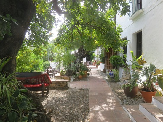 Hotel Finca el Cerrillo: Gathering place
