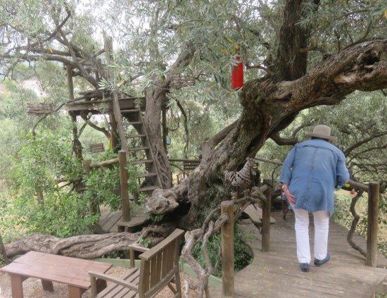 Canillas de Albaida, España: Tree house with honest bar