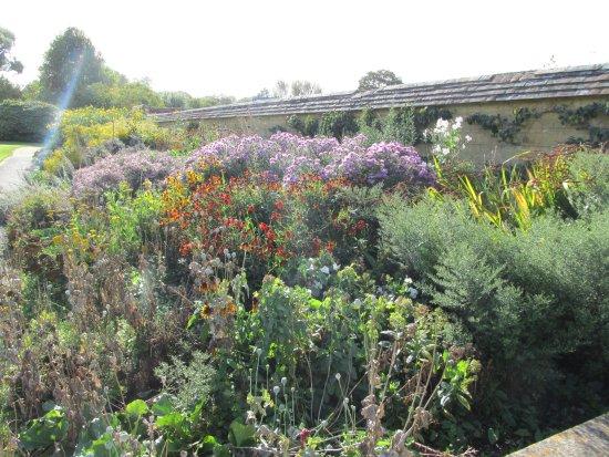 Ilminster, UK: Garden at Barrington Court