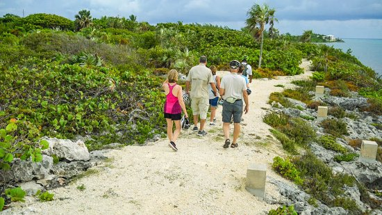 East End, Grand Cayman: A short hike on one of the trails along the bike route