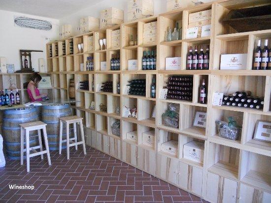 Castiglion Fibocchi, إيطاليا: Wine shop e tasting