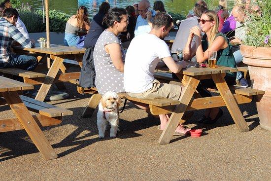 столы на улице Picture Of Lido Cafe Bar London Tripadvisor