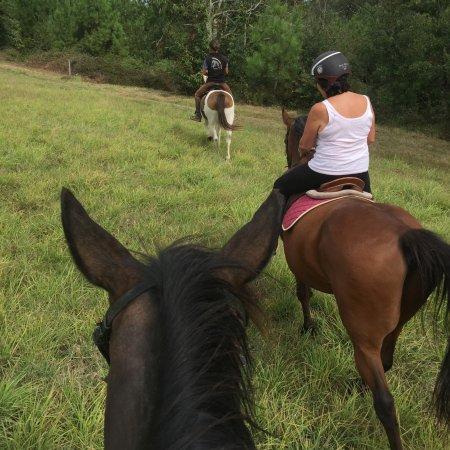Ferme Equestre L'Idalgo
