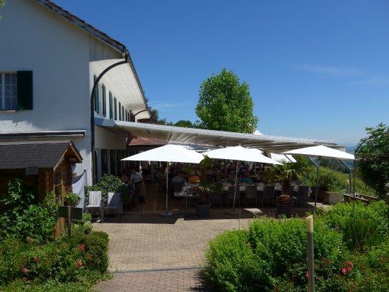 Lugnorre, สวิตเซอร์แลนด์: Essen unter Schirmen
