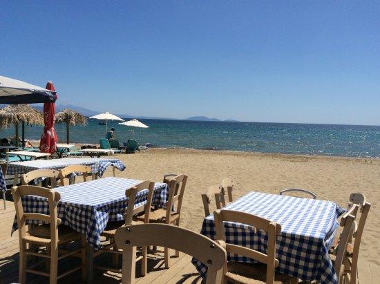 Marathon, Greece: Terrasse donnant sur la mer