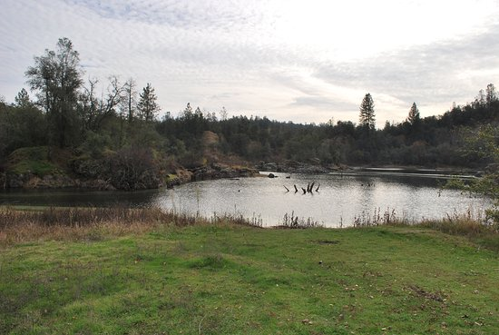 Penn Valley, CA: Pond at Black Swan Trail-lower trail from parking area