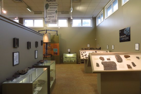 Sydney Mines Heritage Museum and Fossil Centre: Displays