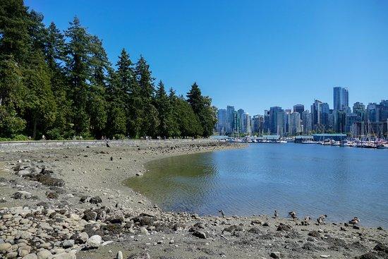 Stanley Park: Début du parc avec vue sur Vancouver