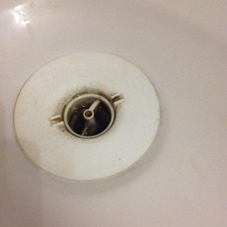 Appoigny, Francia: Bonde de la douche jamais nettoyée
