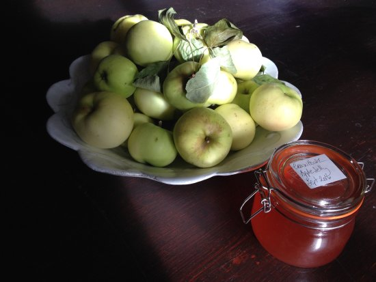 Snape, UK: Homemade jelly, marmalade and jam at breakfast