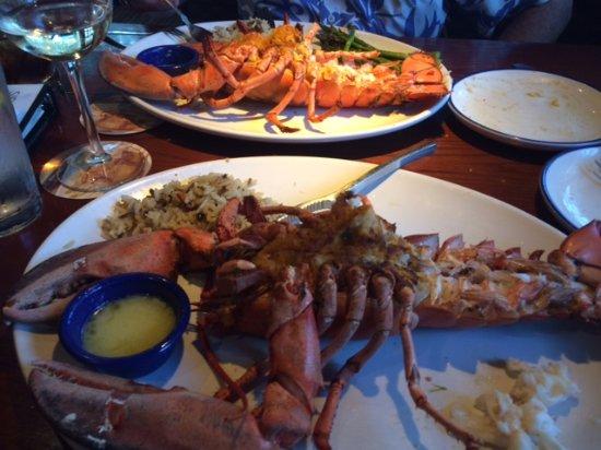 Aiken, SC: Stuffed Maine Lobster