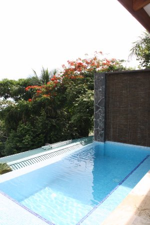 Mal Pais, Kosta Rika: Piscina privada de la habitación