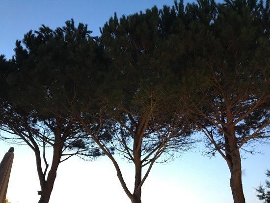 Serra-di-Ferro照片