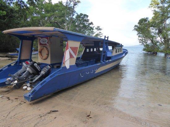 Bunaken SeaGarden Resort: Tauchboot