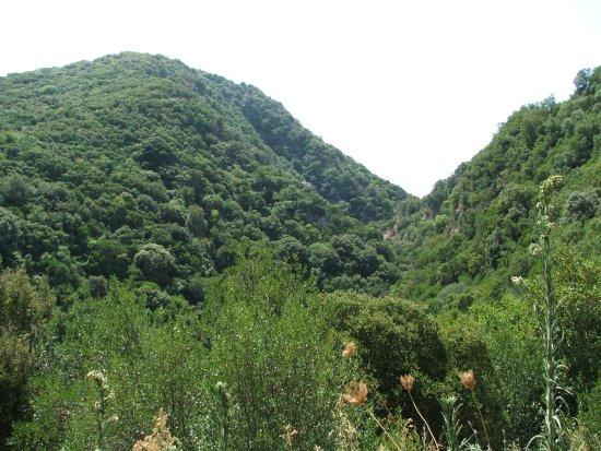 Messenia Region, Yunani: Μέσα σε χαράδρα
