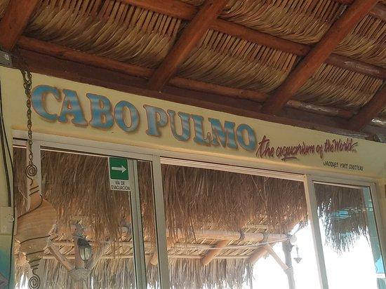 Cabo Pulmo Beach Resort: 20170914_083547_large.jpg