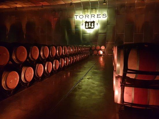 Pacs del Penedes, Spain: Torres