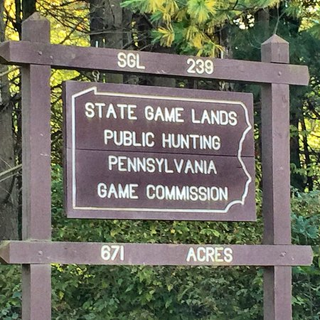 State Game Lands #239