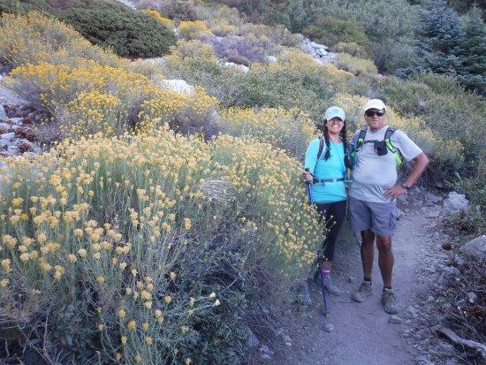 Mount Baldy, Kalifornia: Mt. Baldy Trails