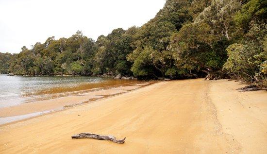 Stewart Island, Nueva Zelanda: Millers Beach.