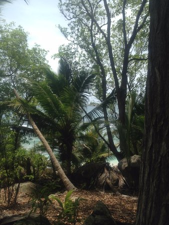 Mahe Island, Seychelles: View outward from Moyenne