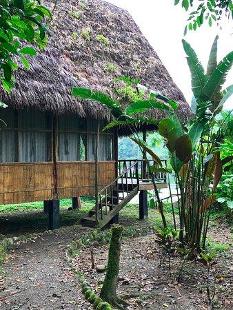 Cotococha Amazon Lodge Photo