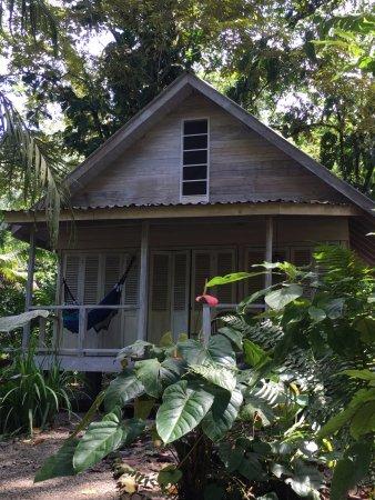 Golfito, Κόστα Ρίκα: Our cabina
