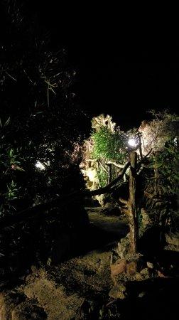 Figari, France: IMAG2237_large.jpg