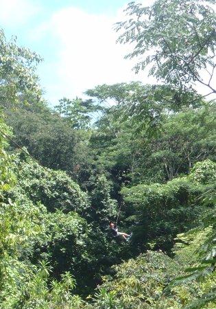 Isla Mahé, Seychelles: Ziplining