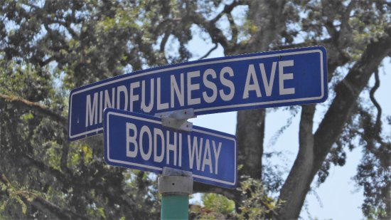 Ukiah, CA: a spiritual intersection at the City of Ten Thousand Buddhas