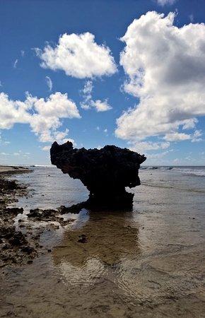 Tuamotu Archipelago, Frans-Polynesië: Rocher aux tortues